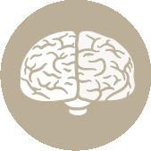 sistema nervioso cráneo-sacral